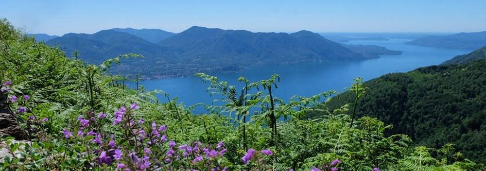 Lago Maggiore: E-Mountainbike Tour entlang der Linea Cadorna