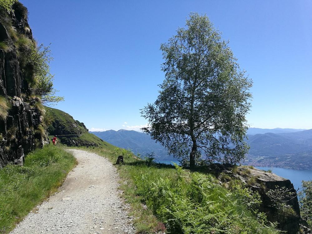 Friedlich führt der Radweg durch grüne Wiesen hoch über dem blau leuchtenden See. Nie wieder Krieg!