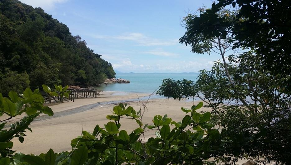 Strand im Penang Nationalpark | Malaysia