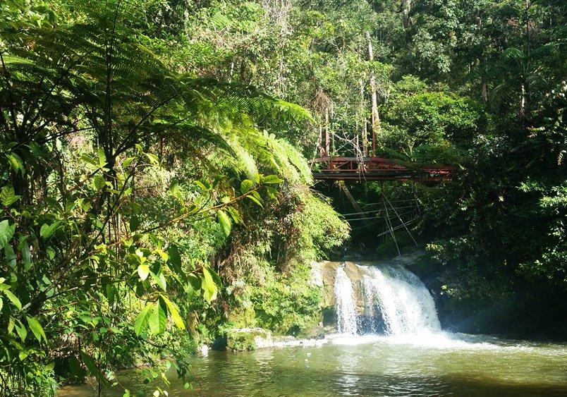 Wasserfall Wanderung bei Tanah Rata in den Cameron Highlands in Malysia