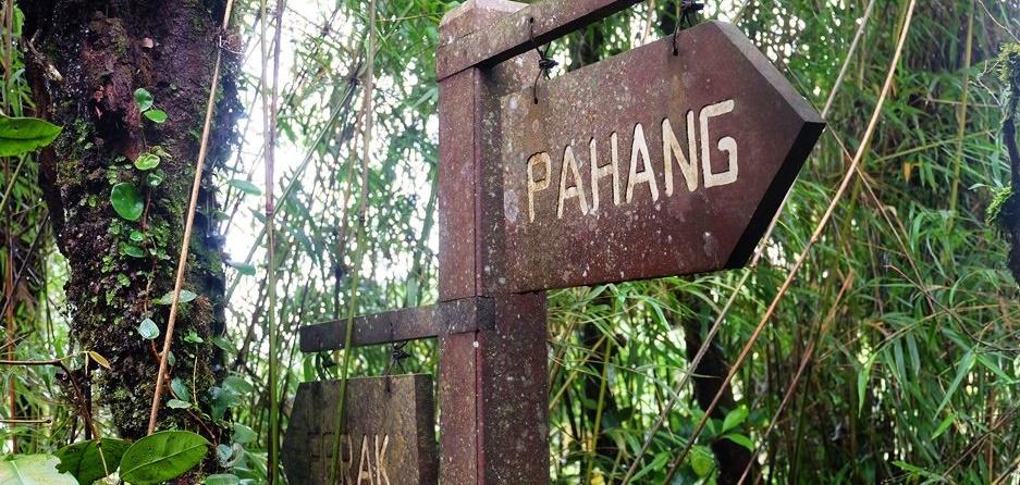 Malaysia – 3 kleine exotische Wanderungen