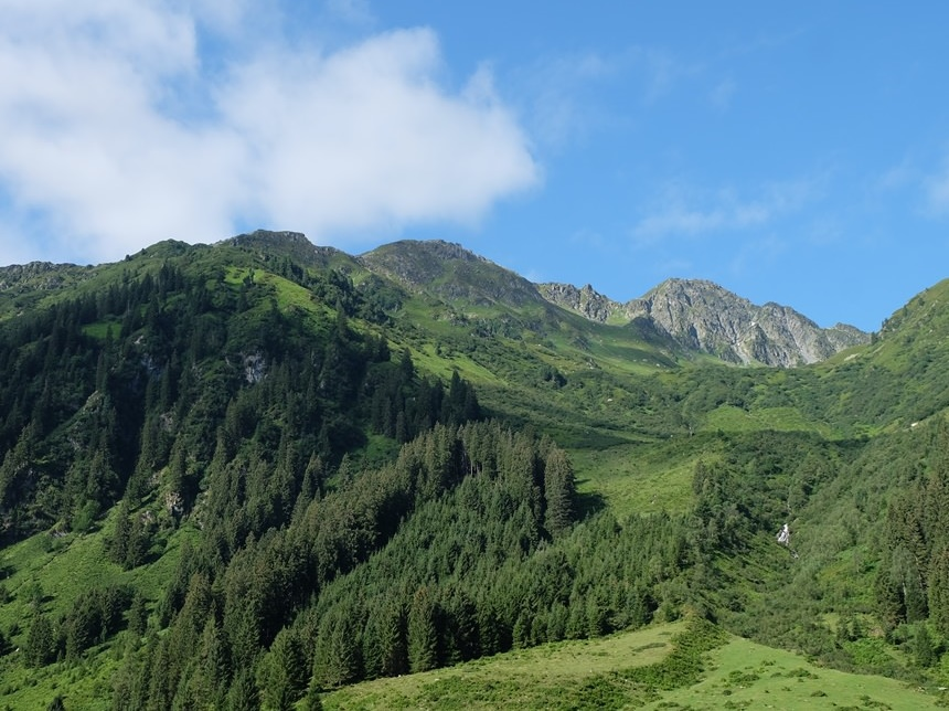 Grün und ein wenig grau - Grasberge in den Kitzbüheler Alpen | Wildschönau, Tirol