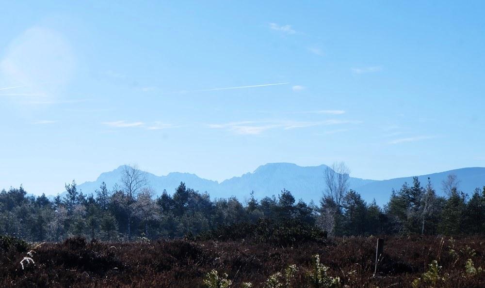 Filz und Berge