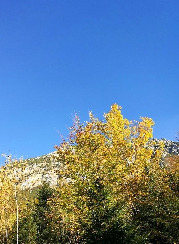 Staufen im Herbstkleid
