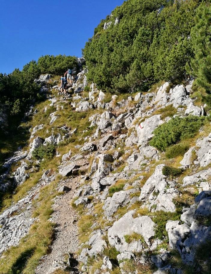 Durch Latschen und Felsen