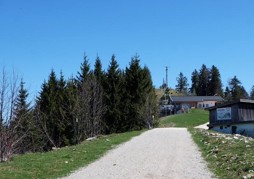Endspurt am Weg zum Unternberg