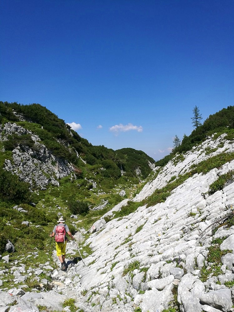 Hüttenweg von der Laufener Hütte