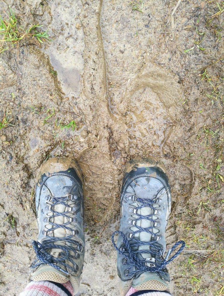 Wandern im Herbst im Allgäu - Schuhe putzen nicht vergessen