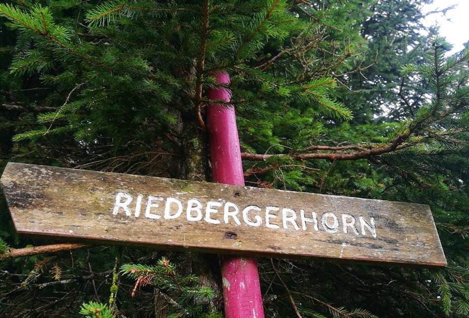 Da lang zum Riedberger Horn/ Allgäu