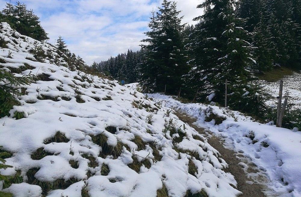 Winterpfad am Riedberger Horn