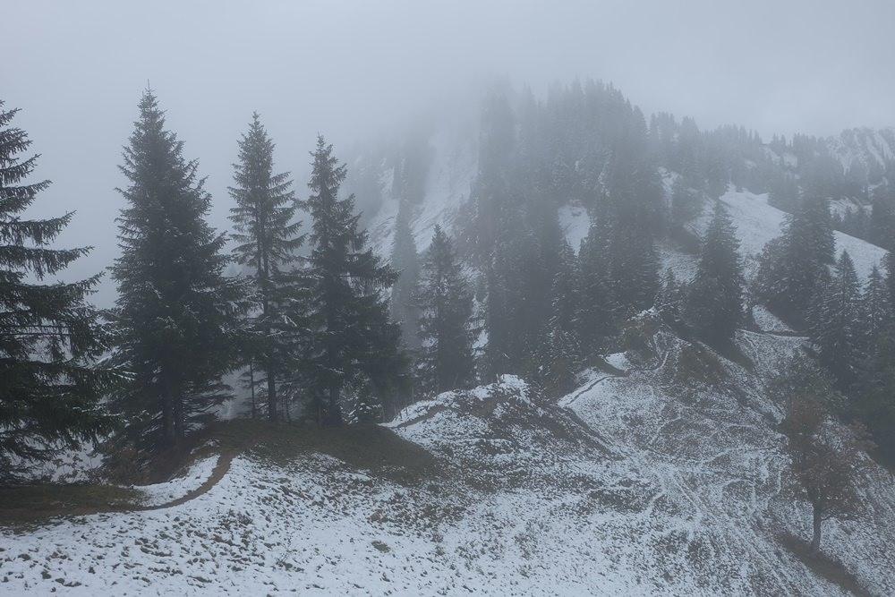 Auf dem Weg zum Gierenkopf in den Allgäuer Bergen bei Balderschang