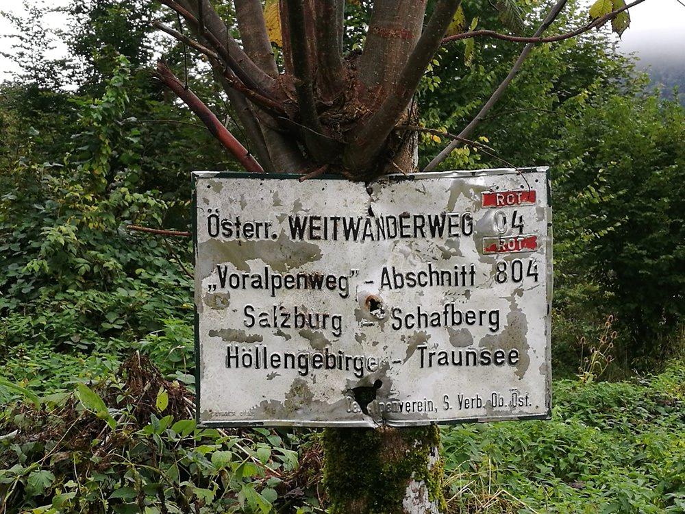 Schafberg-Wanderung