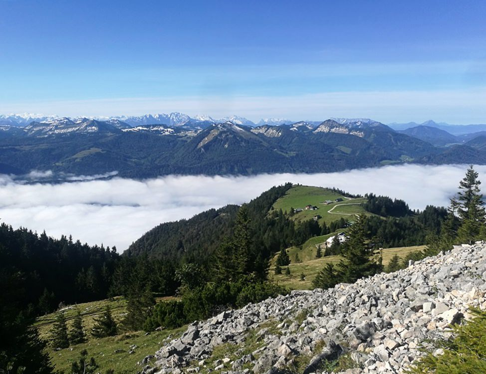 Nebel über dem Wolfgangsee