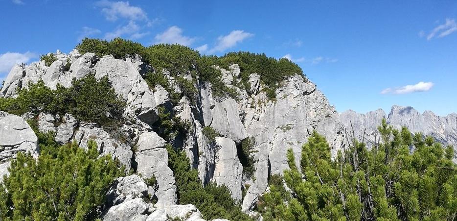 Gipfelbuch Hochkranz (Kallbrunnalm, Berchtesgadener Alpen)