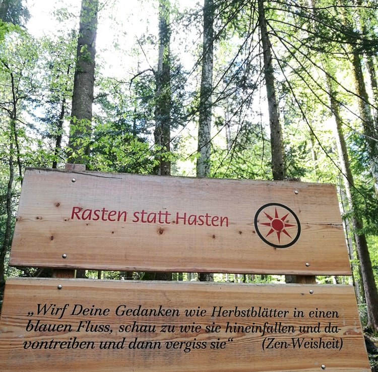 Philophie im Bergwald