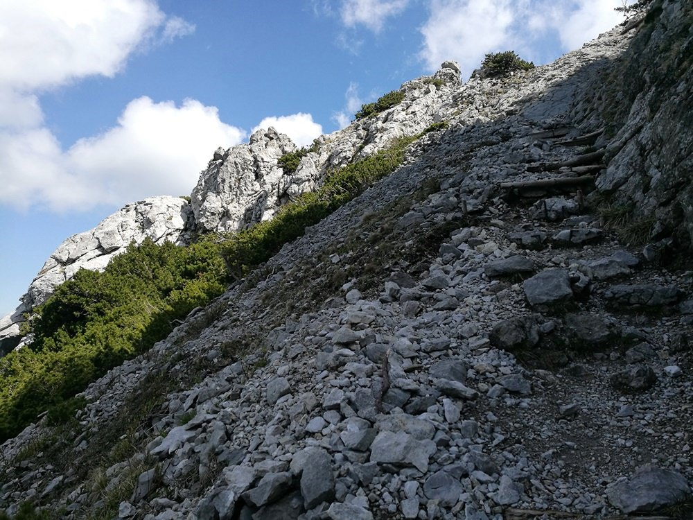 Trittstufen aus Stein