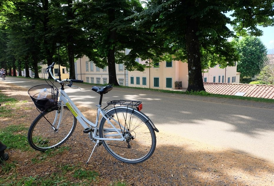 Mit dem Fahrrad auf der Stadtmauer von Lucca